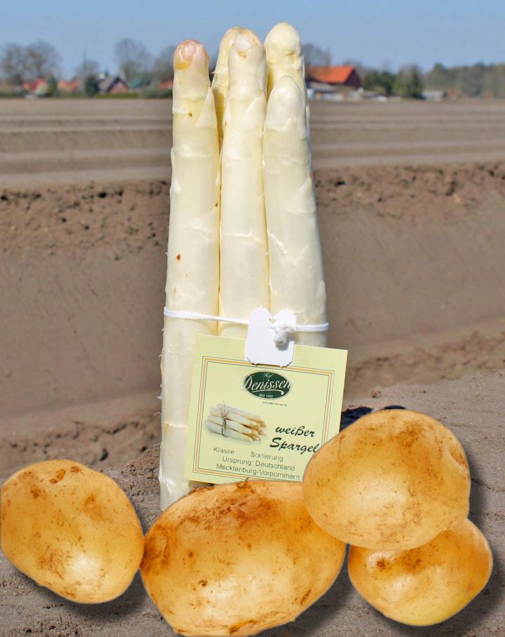 Spargel-Kartoffeln02